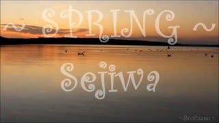SPRING   Sejiwa ( With Lyrics )