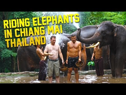 Riding Elephants In Chiang Mai Thailand