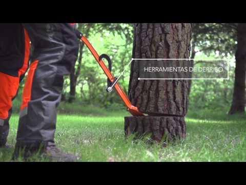 Trabajar con Motosierras: Tala de árboles. El corte básico | Vídeo 14