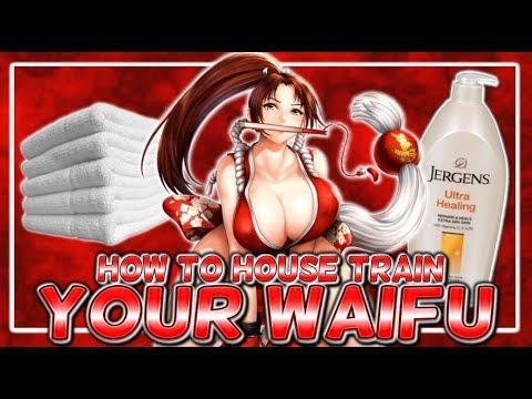 HOW TO HOUSE TRAIN YOUR WAIFU
