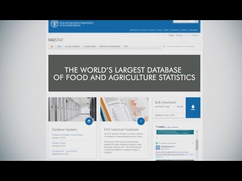 Statistics | Food and Agriculture Organization of the United Nations