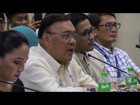 Roque warns vague 'fake news' law can be used to persecute opposition