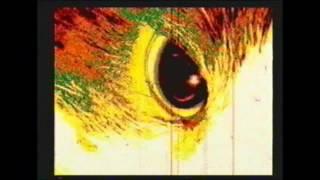 1,000 Beautiful Things (Annie Lennox Rmx)