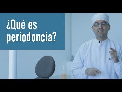 Qué es periodoncia