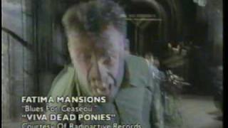 The Fatima Mansions - Blues For Ceausescu (480p)
