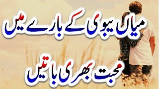 Best Urdu Quotes About Husband Wife Relationship|love Quotes For Husband Wife|Quotes On Mian Biwi