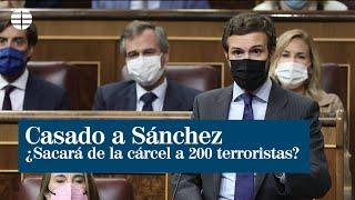 Casado pregunta a Sánchez si sacará de la cárcel a 200 terroristas por los PGE