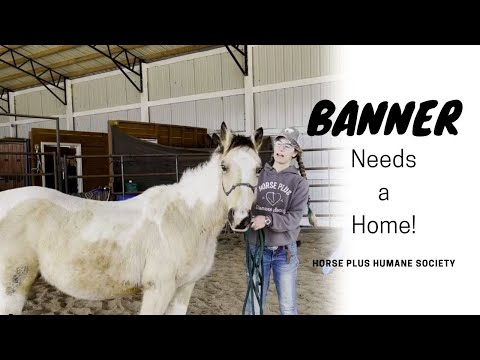 Banner, an adopted Grade in Hohenwald , TN