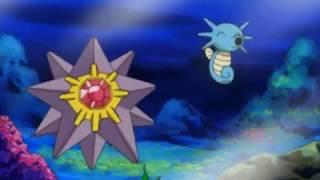 Horsea  - (Pokémon) - Pokemon Misty reunites with Starmie and Horsea