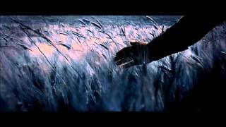 Hans Zimmer & Lisa Gerrard - Now We Are Free (Gladiator Soundtrack)