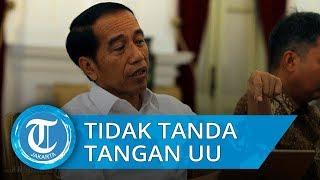 Arsul Sani Bantah soal Jokowi Tidak Tandatangani Revisi UU KPK