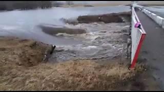 altapress.ru:Паводок на Алтае 2018. В Новокалманке разлилась река.