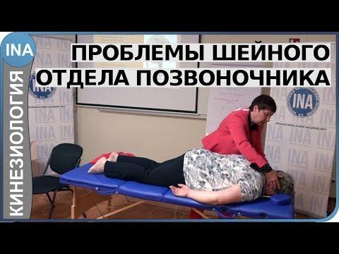 Проблемы шейного отдела позвоночника. Кинезиология. Семинар Васильевой в Германии