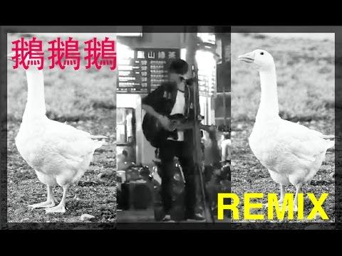 【REMIX】我的老天鵝啊!!鵝鵝鵝Remix(Feat.師大鵝鵝哥)
