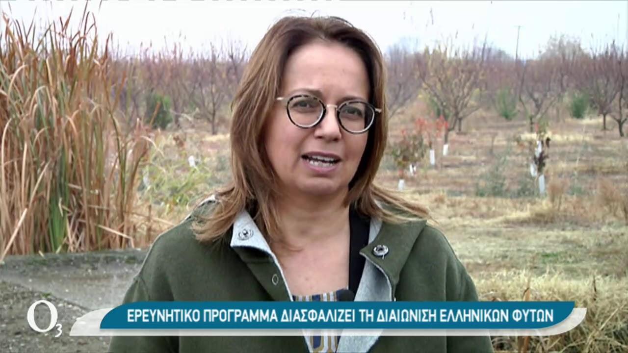 Πιστοποίηση και διάσωση γηγενών ποικιλιών φυτών | 13/01/2021 | ΕΡΤ