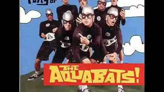 The Aquabats - Attacked By Snakes (with lyrics)