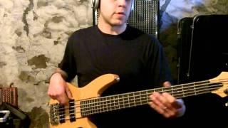 311 - Golden Sunlight (bass cover)