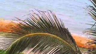 Pono Kai Room B305 Video Part 1