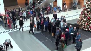 preview picture of video 'Flashmob Motettenchor Ingolstadt'