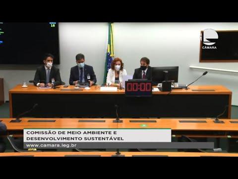 Comissão de Meio Ambiente e Desenv. Sustentável - Discussão e votação de propostas - 13/05/21