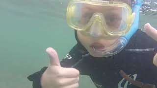 Kid Friendly Snorkeling At Green Island: Great Barrier Reef. Cairns, Australia