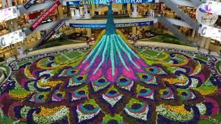 Tapete de flores Santafé Medellín CC Santafé Medellín