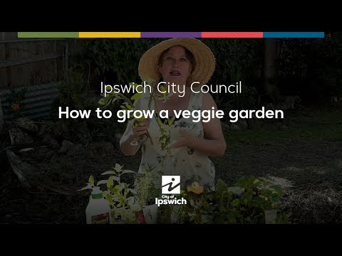 How to Grow a Veggie Garden