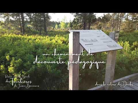 Les tourbières du Doubs, 192 hectares de milieux humides