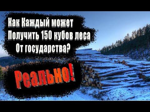 Как бесплатно получить 150 кубов леса на постройку дома - в России - абсолютно любому гражданину...