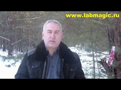 Цена амулет украина