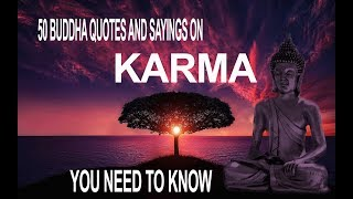 50 Buddha Quotes About Karma | Buddha Quotes On Love, Happiness, Peace | Meditation Relax Music
