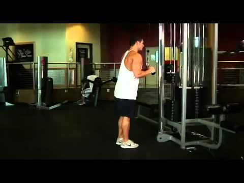 Triceps - Triceps Pushdown - V-Bar Attachment Exercise Guide