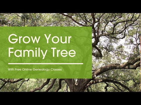 Grow Your Family Tree With Free Online Genealogy Classes