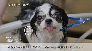 福岡ECO動物海洋専門学校 【福岡ECO動物海洋専門学校】福岡ECOの1日をのぞいてみよう