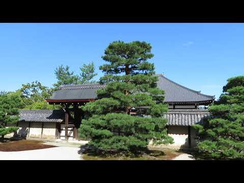 Tenryu-ji, temple zen à Kyoto au Japon