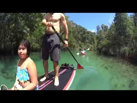 Video TOP 5 FLORIDA SPRING PADDLING TRIPS!