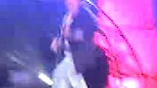 Zorro Viejo - Quedo Así [Concierto]