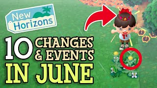 Animal Crossing New Horizons: 10 CHANGES & EVENTS in JUNE (Summer Updates & Tips You Should Know)