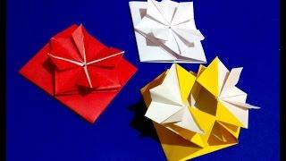 Pop-up Envelope with flower and secret message inside.  Origami Gift card