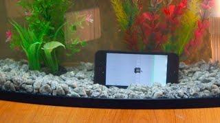 Iphone 5s после воды  4 часа ремонта