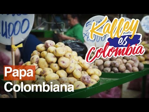 Descubre algunas variedades de papa colombiana