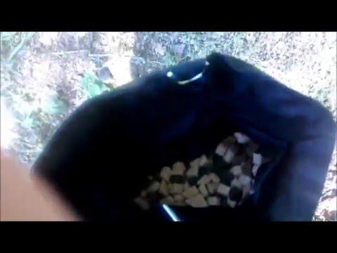 Die Dogsline Futtertasche im Test!