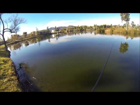 Santee Lakes Bass Fishing Rattle Trap