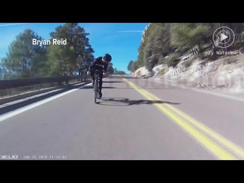 Pyöräilijä törmää peuraan