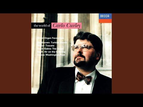 Schubert: Moment musical in F minor, D.780 No.3 (Arr. Curley)