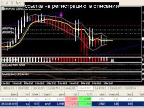 Помощ кредитного брокера хабаровск