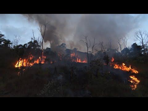 Em Nova Friburgo, total de incêndios florestais em 2021 já é maior do que no ano passado