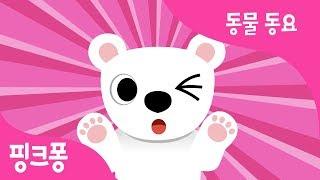 부끄부끄 북극곰 | 북극곰송 | 동물 동요 | 핑크퐁! 인기동요
