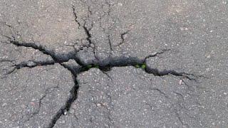 Simak! Keterangan BMKG Soal Gempa 7.0 M di Lombok [Full]