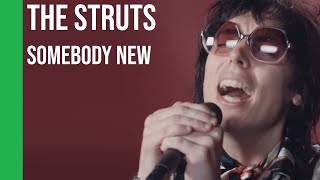 The Struts   Somebody New (acoustic) | Sub Español + Lyrics